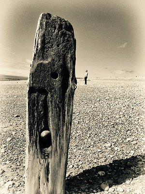 My Approach. mangroyne
